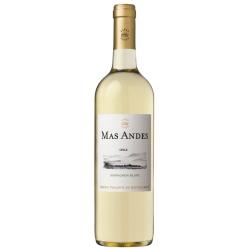 Mas Andes Sauvignon Blanc
