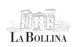 Bollina